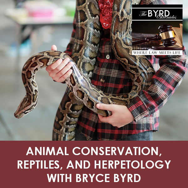 TBC 04 | Animal Conservation